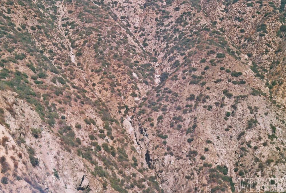 Mt Wilson Trail 3